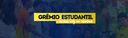 Banner Inicial